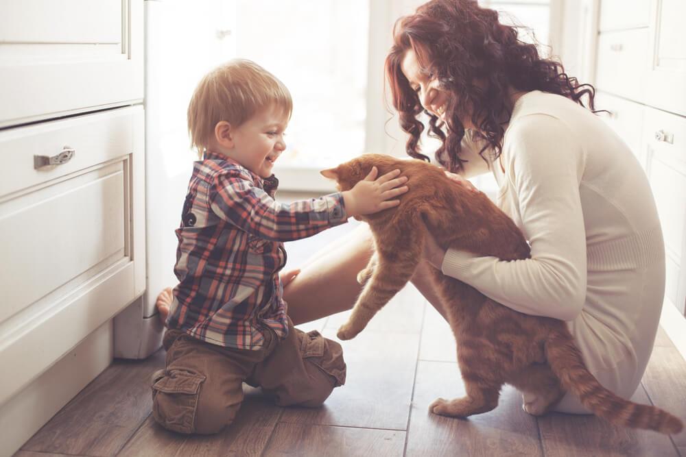 ζώα κατοικίδια παιδιά
